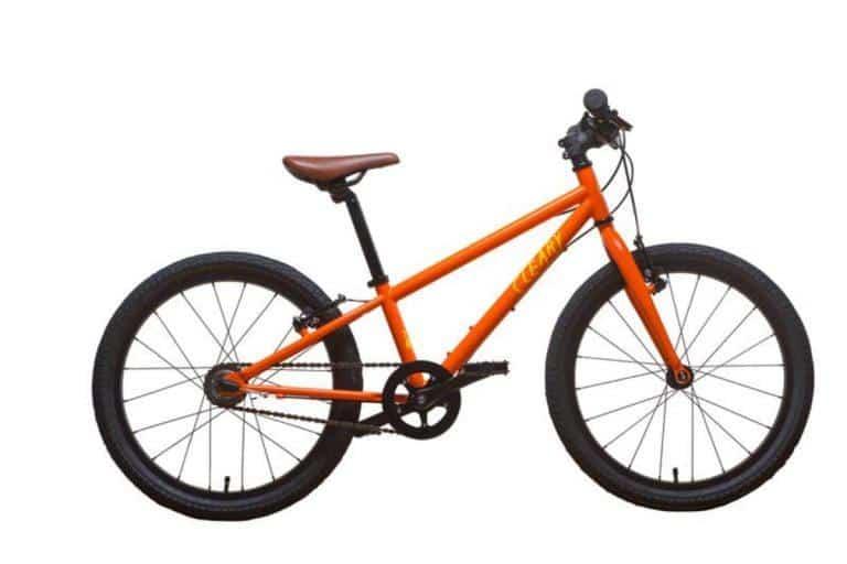 cleary bikes owl 24 inch 5 speed kids bike